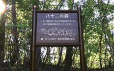 82の森看板_R
