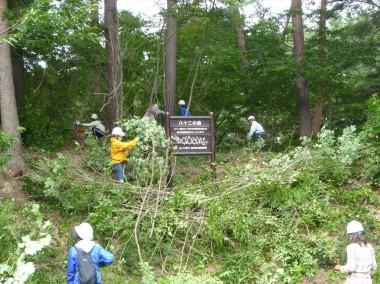 八十二の森活動中_擬木看板の周りもきれいになりました